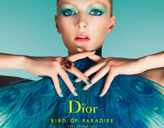 Dior sum look