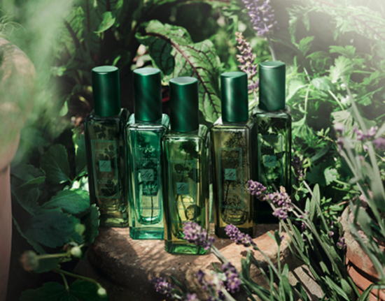 Jo Malone London The Herb Garden look2